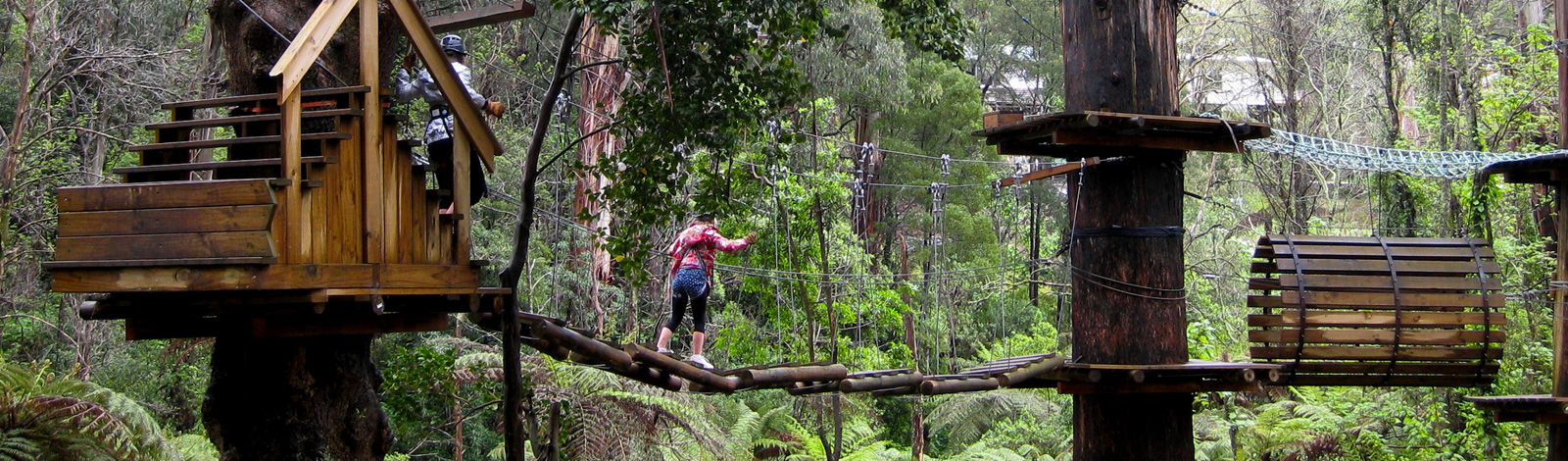 Trees Adventure in Belgrave